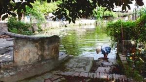 Le village de Thuong Hôi est fier de ses trois anciens puits.