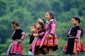 Les petites Thaï blancs
