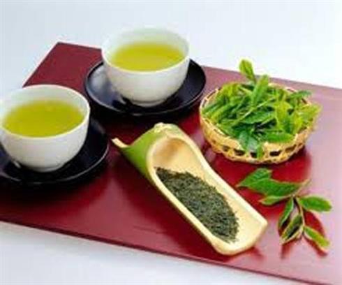 Le thé du Thai Nguyên