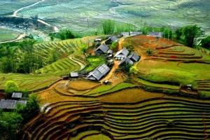 Les rizières en terrasse de Hoang Su Phi