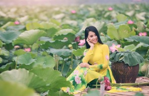 lotus-du-vietnam