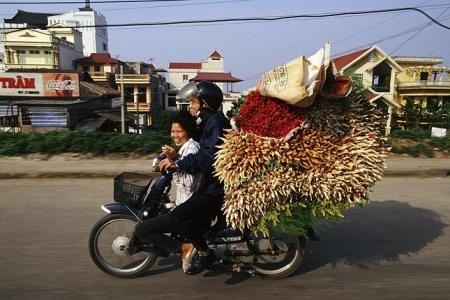 Moto-Vietnamienne7