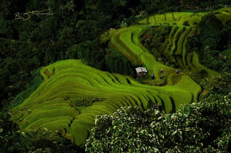 la-beaute-envoutant-du-vietnam2