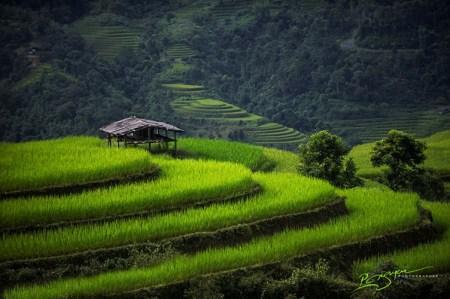 la-beaute-envoutant-du-vietnam8