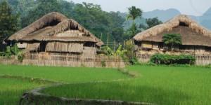 village-tha