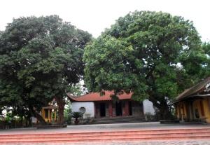 temple-cao-lo