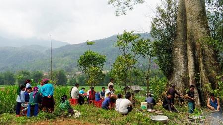 l'ethnie-hmong5