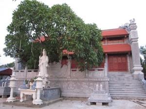 pagode-cuong-xa