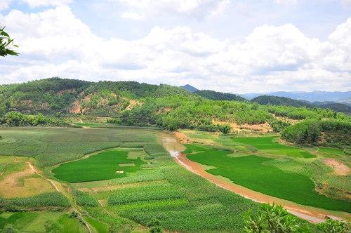 Pendant des mois à sec, le lac est verdoyant avec des cultures de riz et de maïs