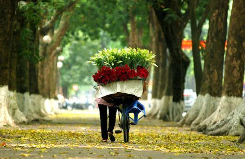 vendeur de fleur hanoi