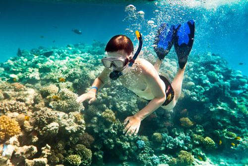 plongee pour coraux