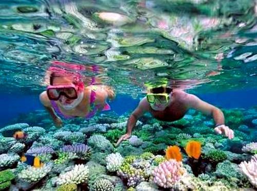 baie vinh hy coraux