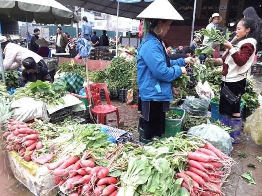 marche sapa variete legume
